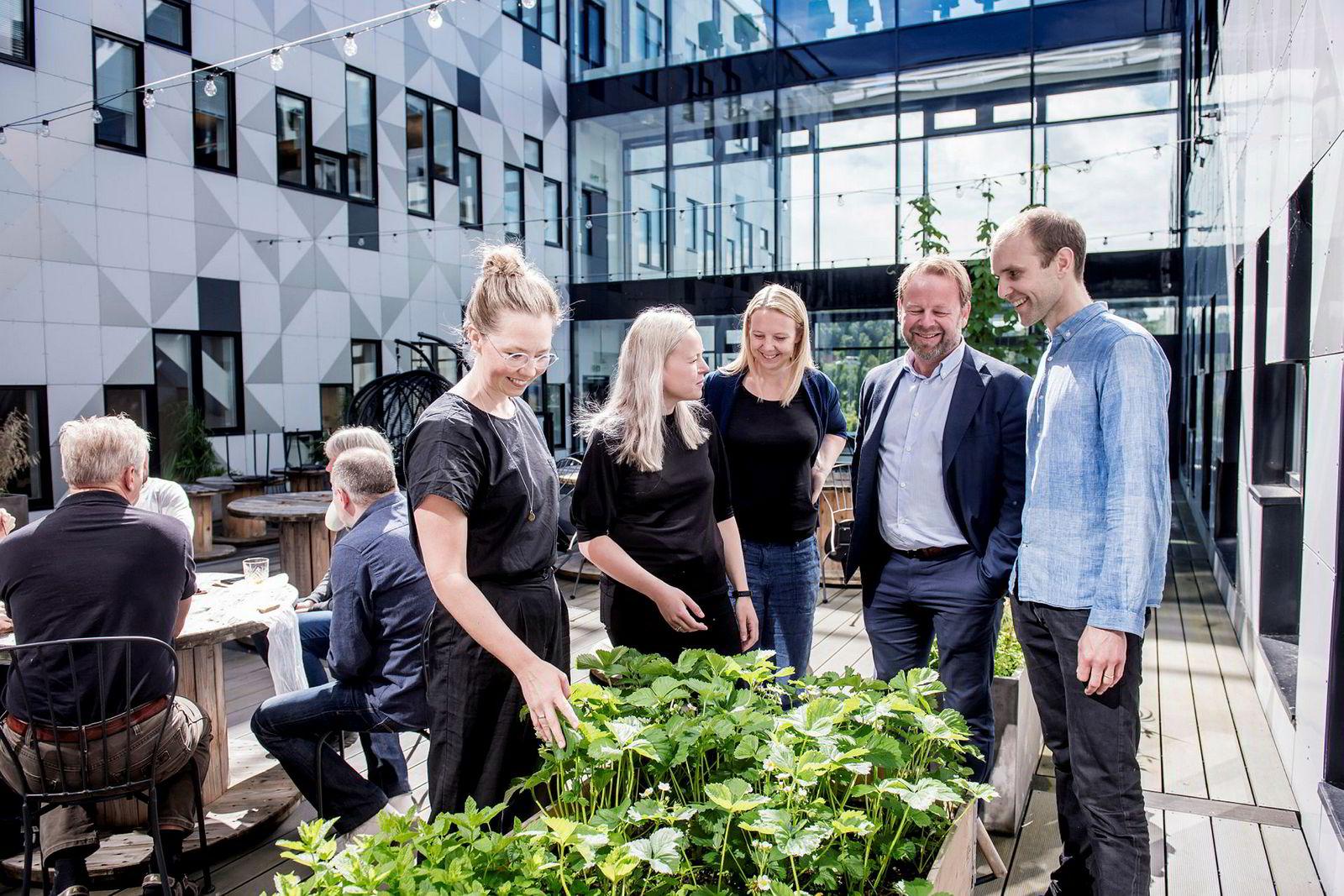 Norconsult i Trondheim satser nå hardt på å øke de ansattes bevissthet rundt klima og miljø. Utenfor kantinen har de blant annet plantet urter. Fra venstre: Silje Solberg (Ducky), Nina Eklo Kjesbu, Guro Thue Unsgård og Øyvind Wanderås fra Norconsult og Mads Simonsen (Ducky).