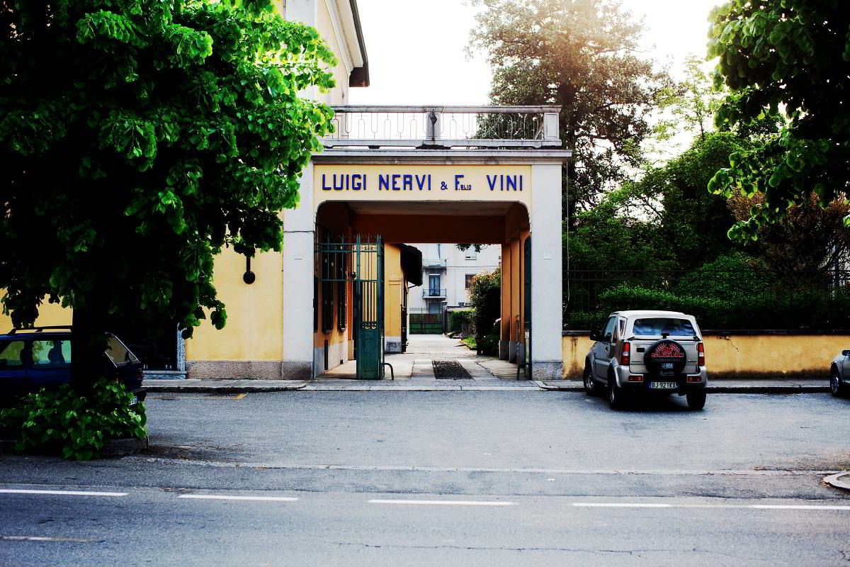 Nervi vingård i Piemonte Foto: