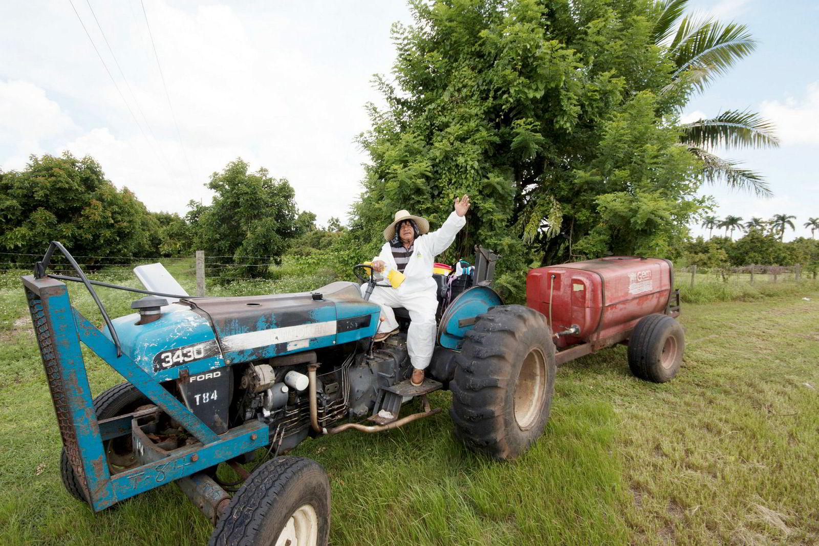 «Laksefarmen? Den har jeg aldri hørt om, sier en lokal bonde på en traktor som har sett bedre dager. Atlantic Sapphire bygger laksefabrikk på land midt mellom tomat- og papaya-plantasjer.