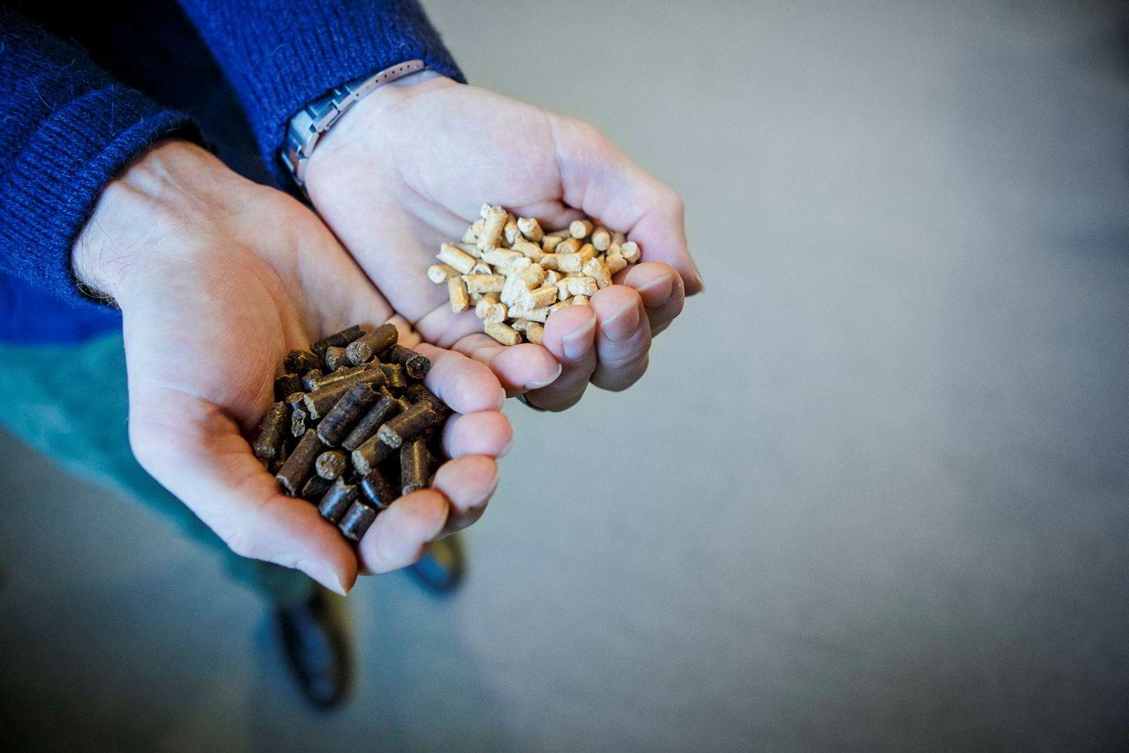 De norskutviklede mørke Arbacore-pelletene har mange fordeler over vanlige, lyse pellets.