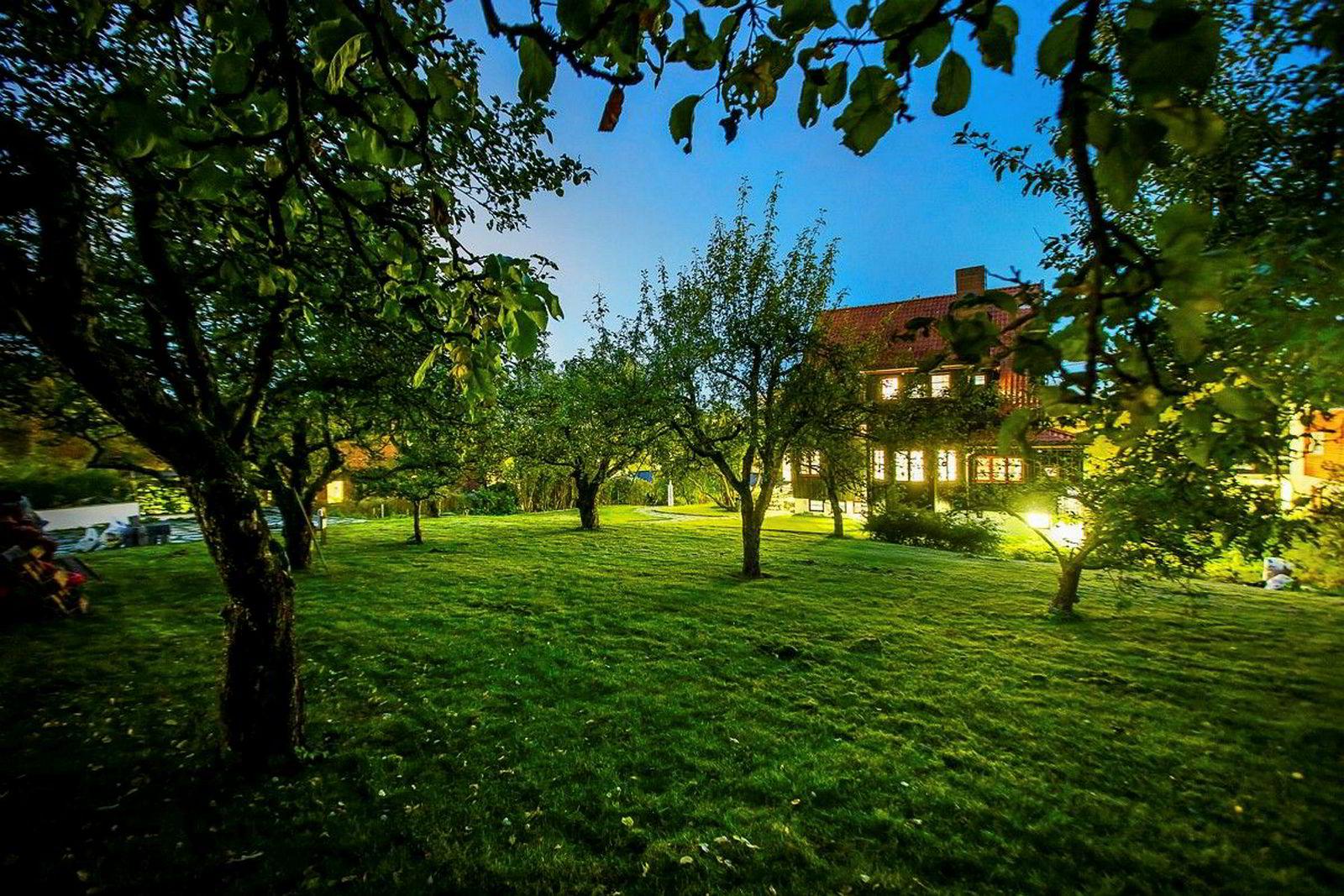 Hoffstua ligger på en 1,6 mål stor tomt i Apalveien.