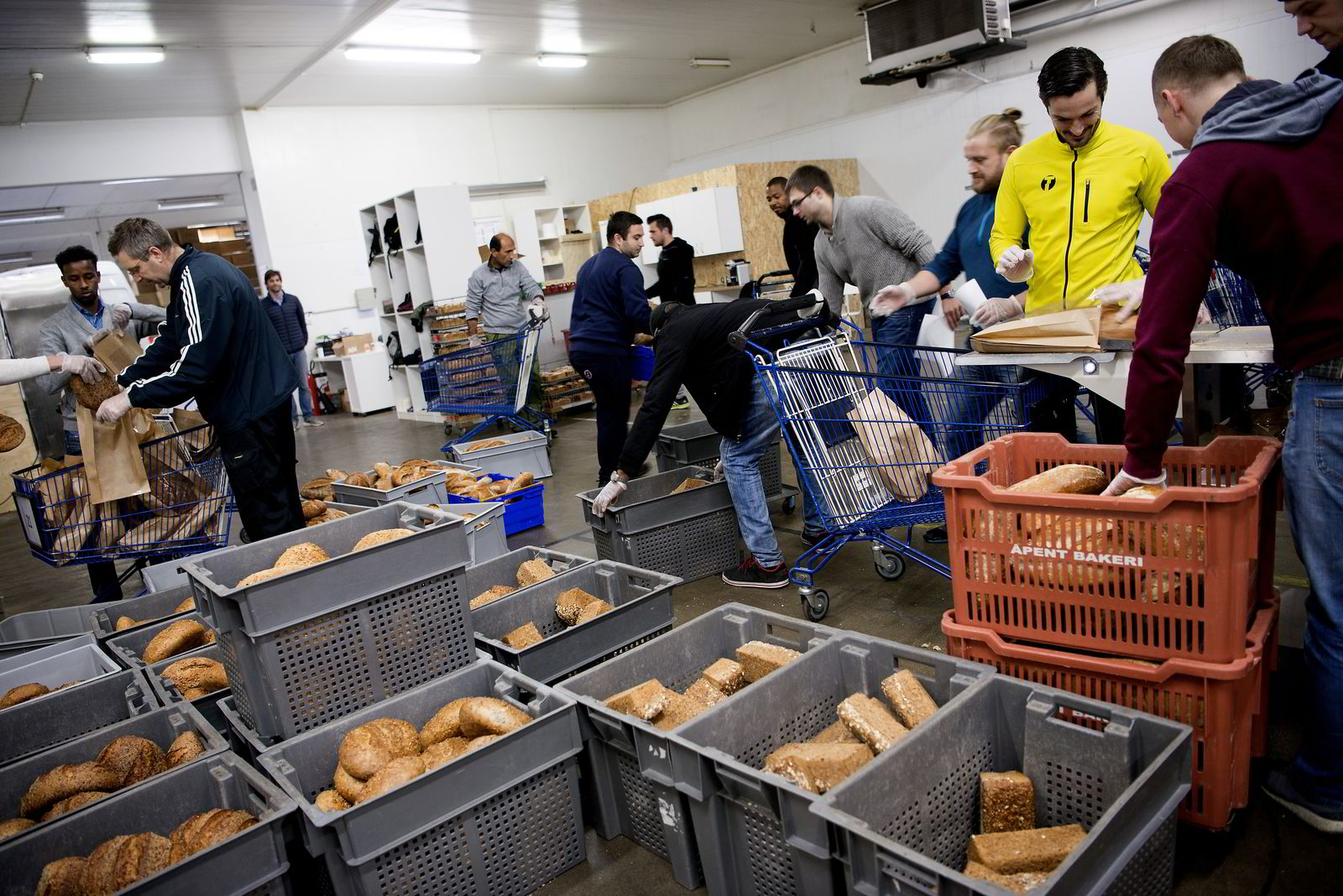 Å levere brød høres ut som en enkel jobb, men kan fort bli kaos om ikke logistikken er på plass.
