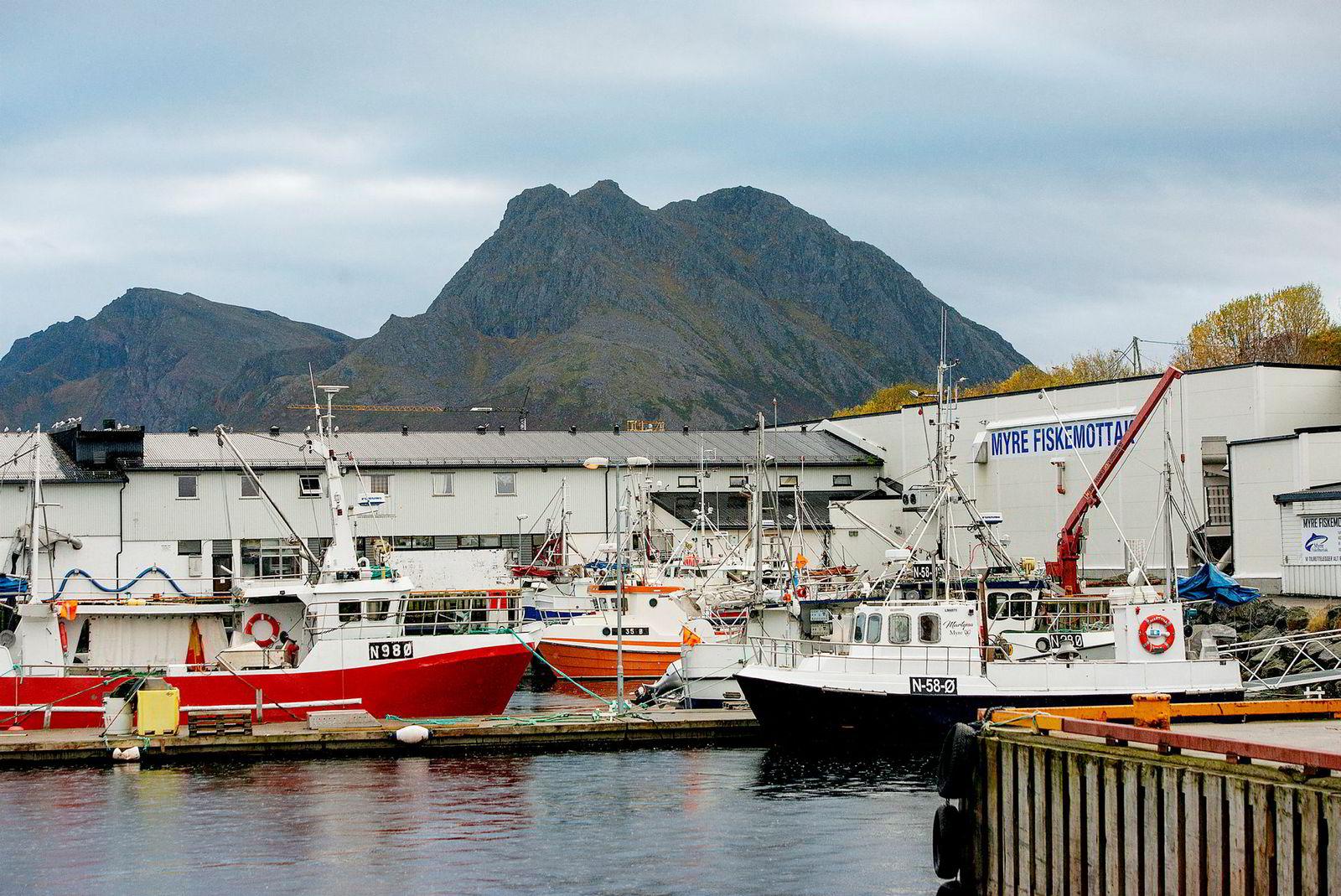 Myre fiskemottak i Vesterålen, der Ted Robin Endresen er daglig leder.