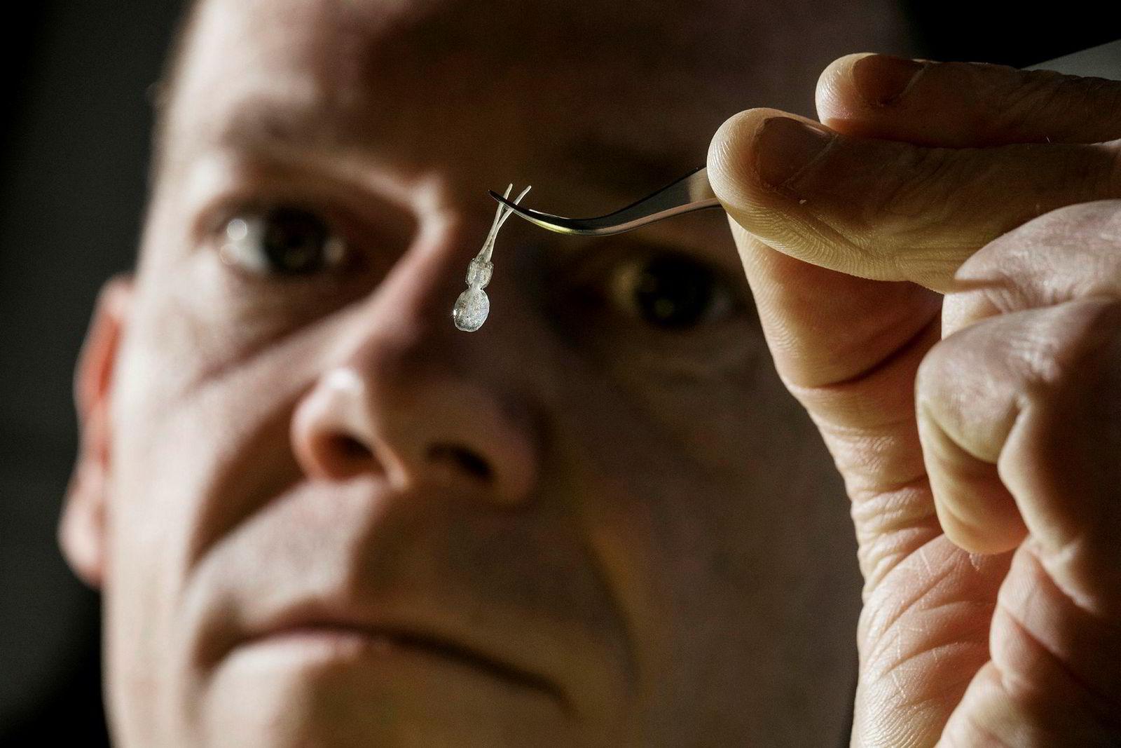 Kevin Glover ved Havforskningsinstituttet holder opp en lakselus. Havforskningsinstituttet i Bergen har påvist at lakselusen er i ferd med å bli motstandsdyktig mot metodene som brukes for å bekjempe den.