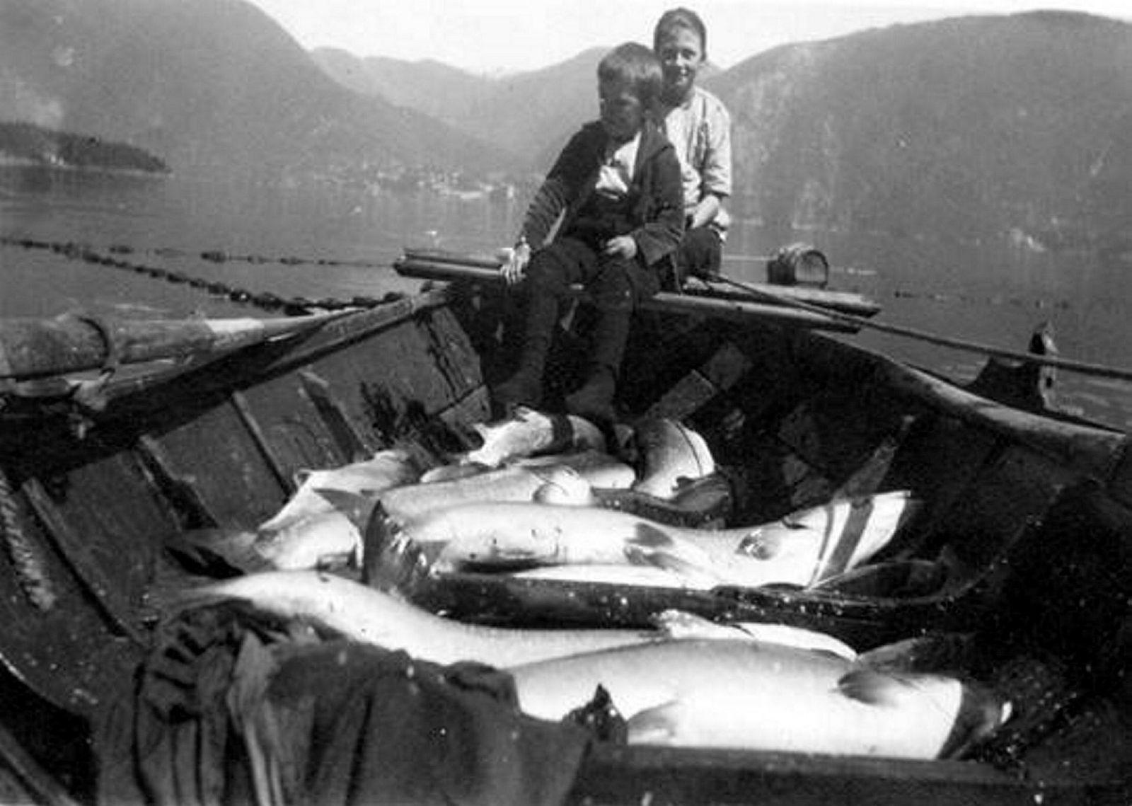 Det var en gang da Vosso nærmest flommet over av storlaks og det ble fanget laks i store mengder i kilenøtene i fjorden. Slik er det ikke lenger, og den storstilte redningsaksjonen for Vosso-laksen har så langt gitt magre resultater.