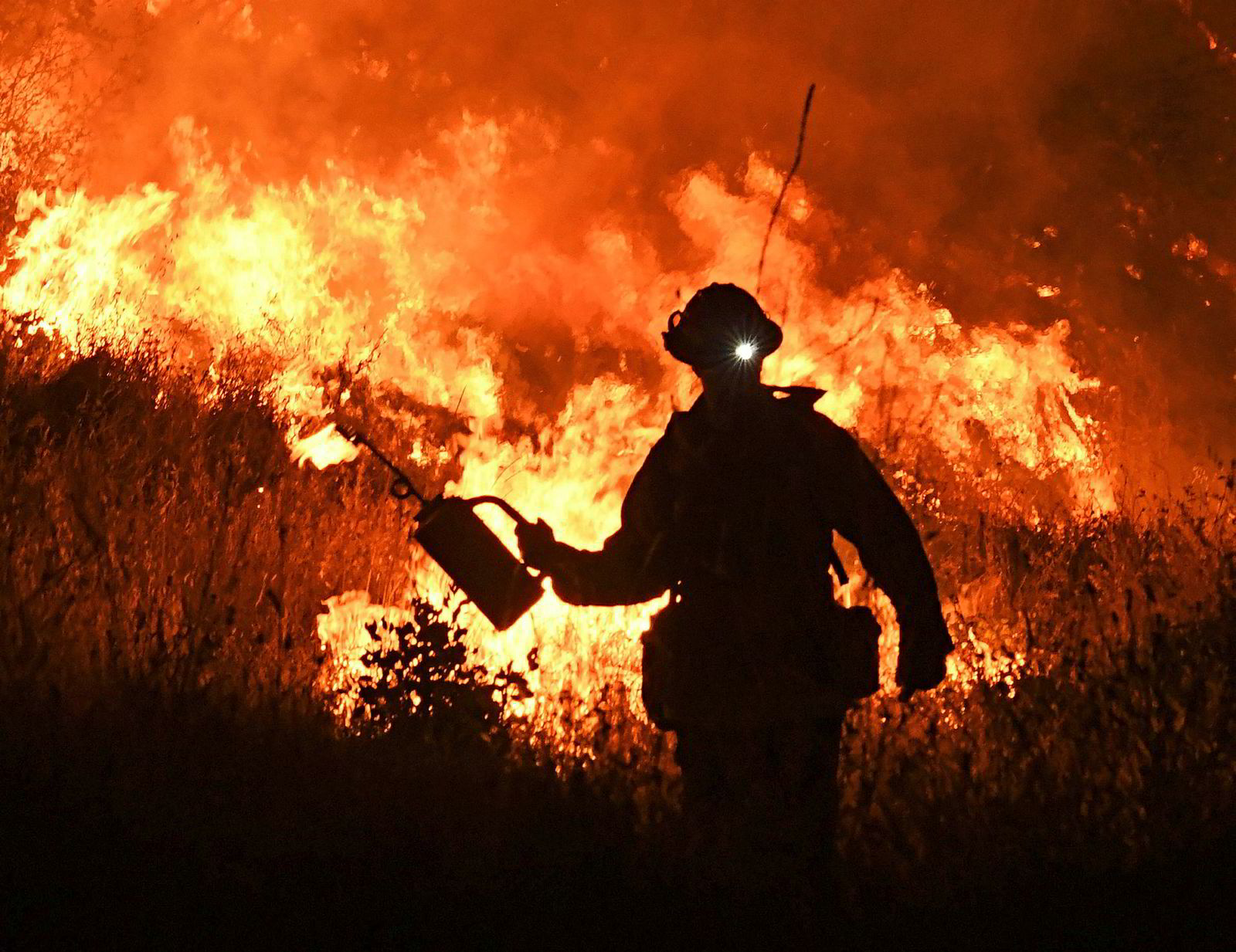 Brannmenn starter en kontrollert brann for å beskytte hus mot spredningen av Ranch-brannen. Flere politikere har gått ut og sagt mer skog bør tynnes ut brennes for å redusere brannfaren, noe som har mottatt kraftig kritikk fra miljøaktivister.