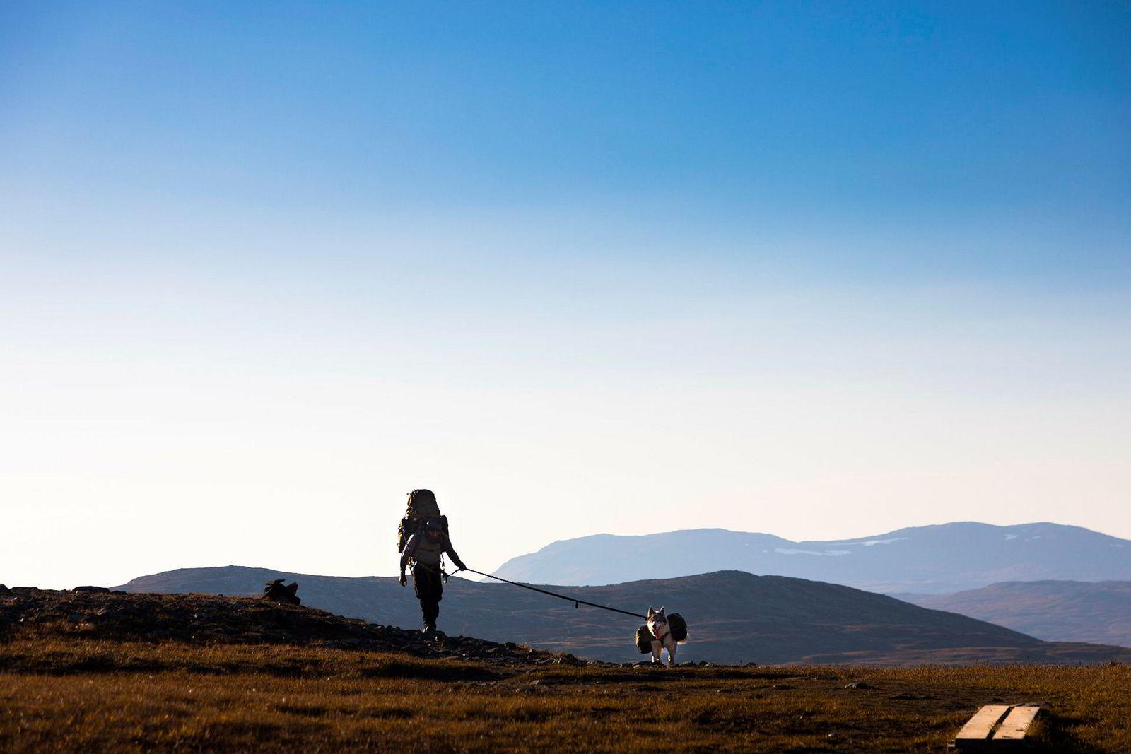 Sylane viser seg fra sin beste side da Helstrup og hunden Obelix beveget seg østover mot svenskegrensen. Den kalde årstiden ventet.