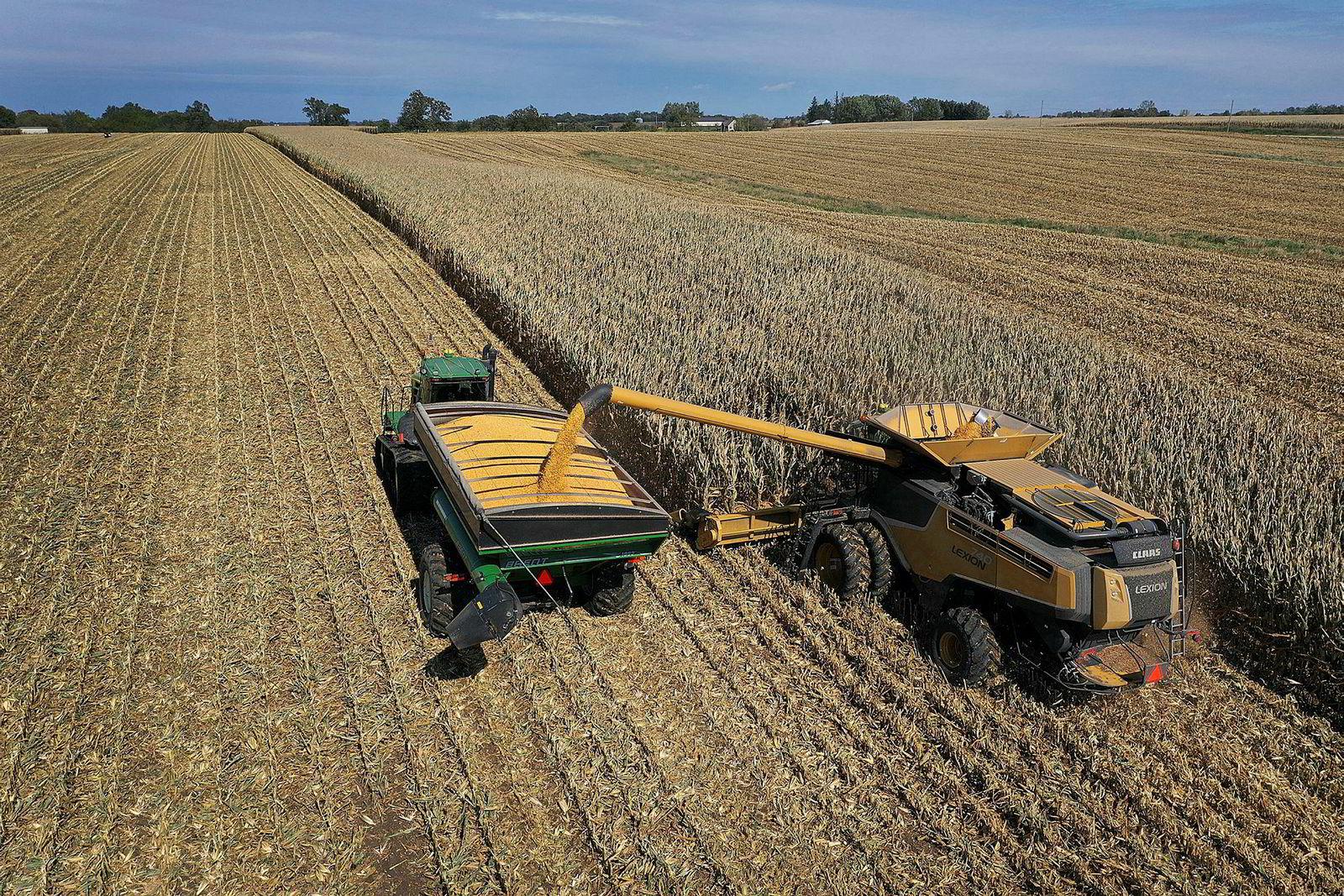 Bønder i USA er hardt rammet av handelskrigen med Kina. Første fase av en handelsavtale vil øke eksport av amerikanske landbruksprodukter, blant annet korn fra Iowa, til Kina. Her fra Hansen Family Farms i Baxter, Iowa.