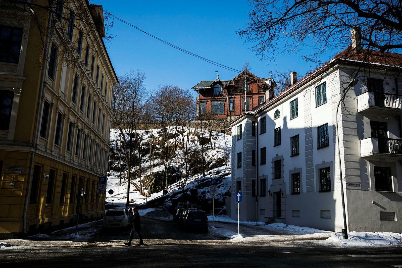 Langs skrenten på Frogner-eiendommen planlegges det bygging av boligblokker.