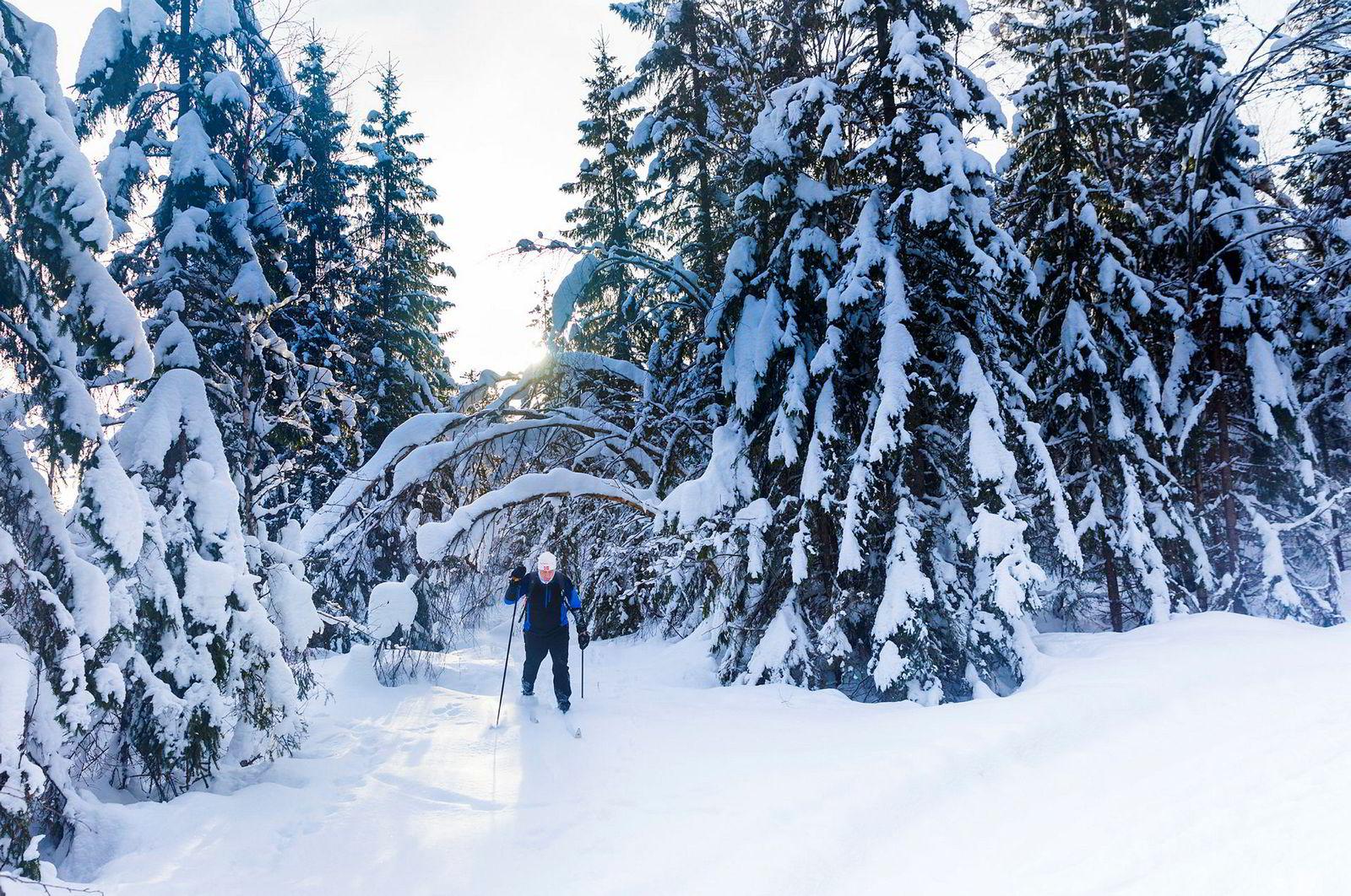 Enorme snømengder har gitt uvanlig mange muligheter denne vinteren. Forholdene er perfekte for den 73 år gamle tidligere kombinertløperen Matz Jenssen som liker seg best på avstikkerne i oslomarka.