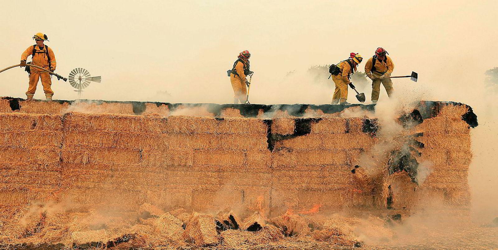 Brannmannskap fra Arcadia og Santa Rosa forsøker å slukke brann i en stabel med høyballer bak en vingård i California.