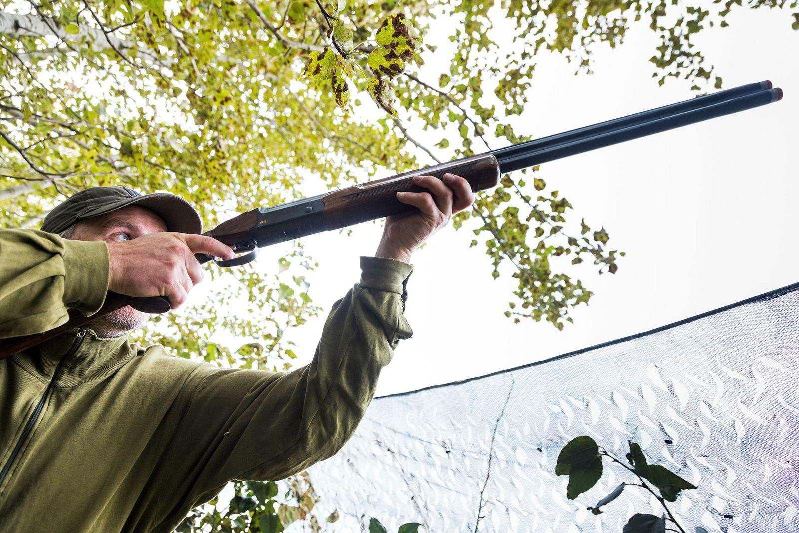 Elling Tryterud feller årets første due med et velrettet skudd på cirka 20 meters avstand, en perfekt skuddmulighet.