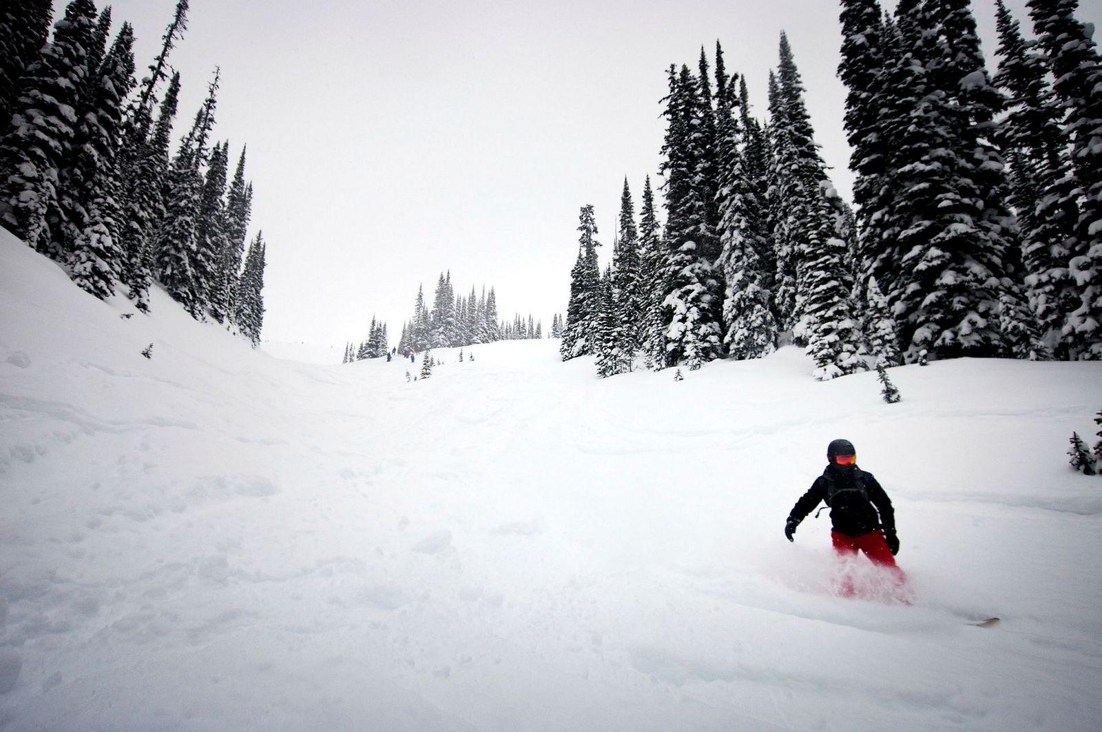 På én dag kan skituristene få med seg 7000 høydemeter på ski og brett. Klimaet i British Columbia og Rocky Mountains i Canada gjør at det faller flere meter snø hver vinter, og områdene er blant de beste i verden for løssnøkjøring.