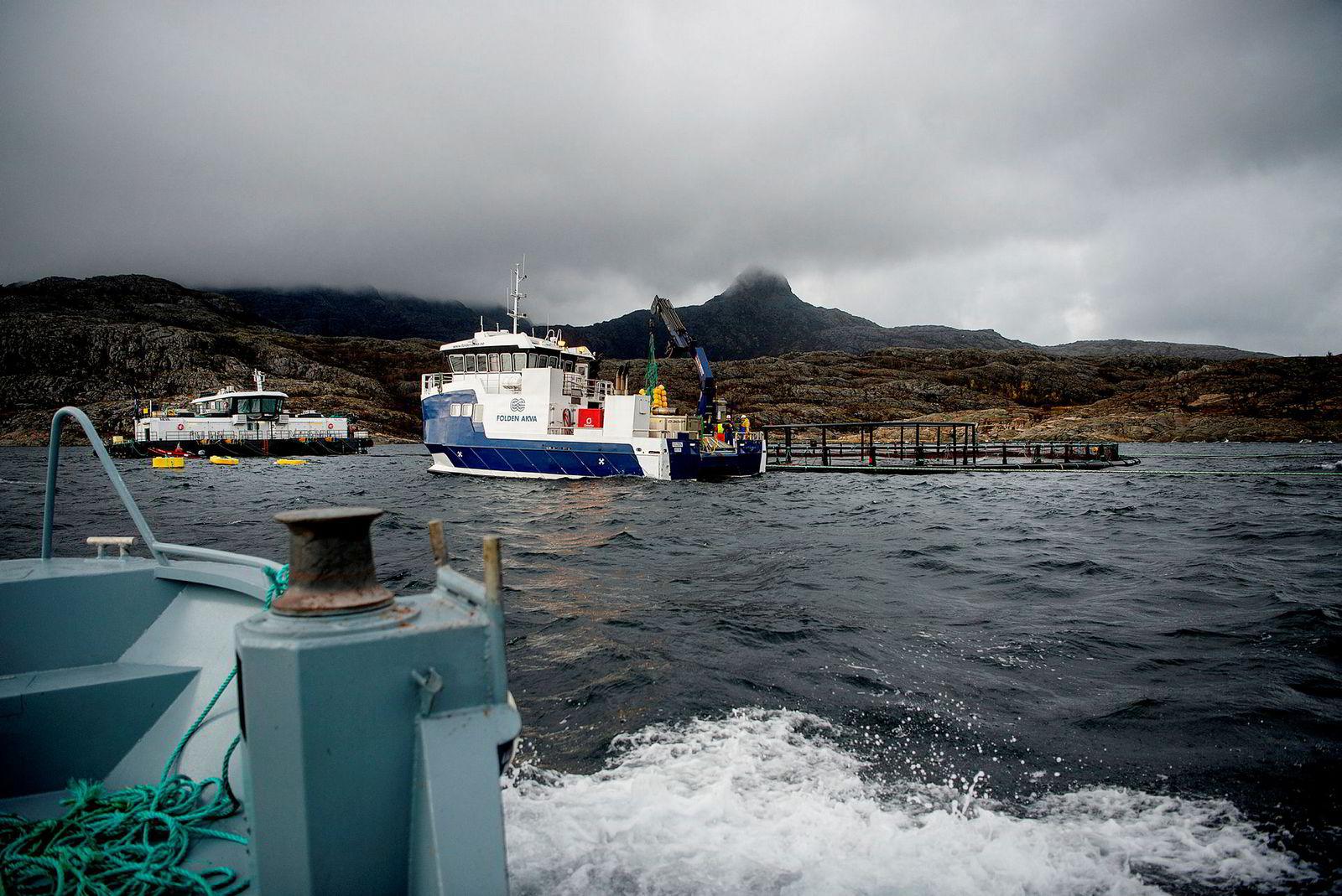 Folden Akvas servicebåt ved holmen Bjørnøya ved øya Landegode, ved oppdrettsmerder til Lofoten Sjøprodukter utenfor Bodø.