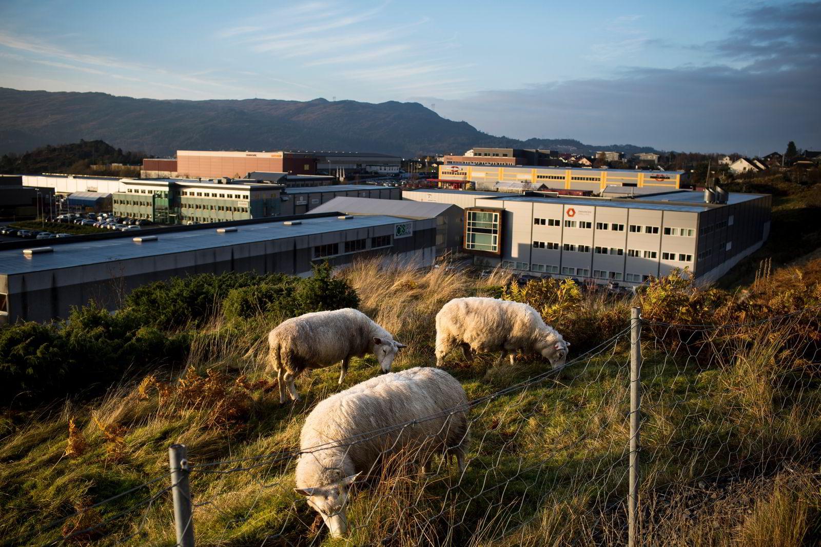IKM Cleandrill holder til i Straume næringspark på Sotra utenfor Bergen