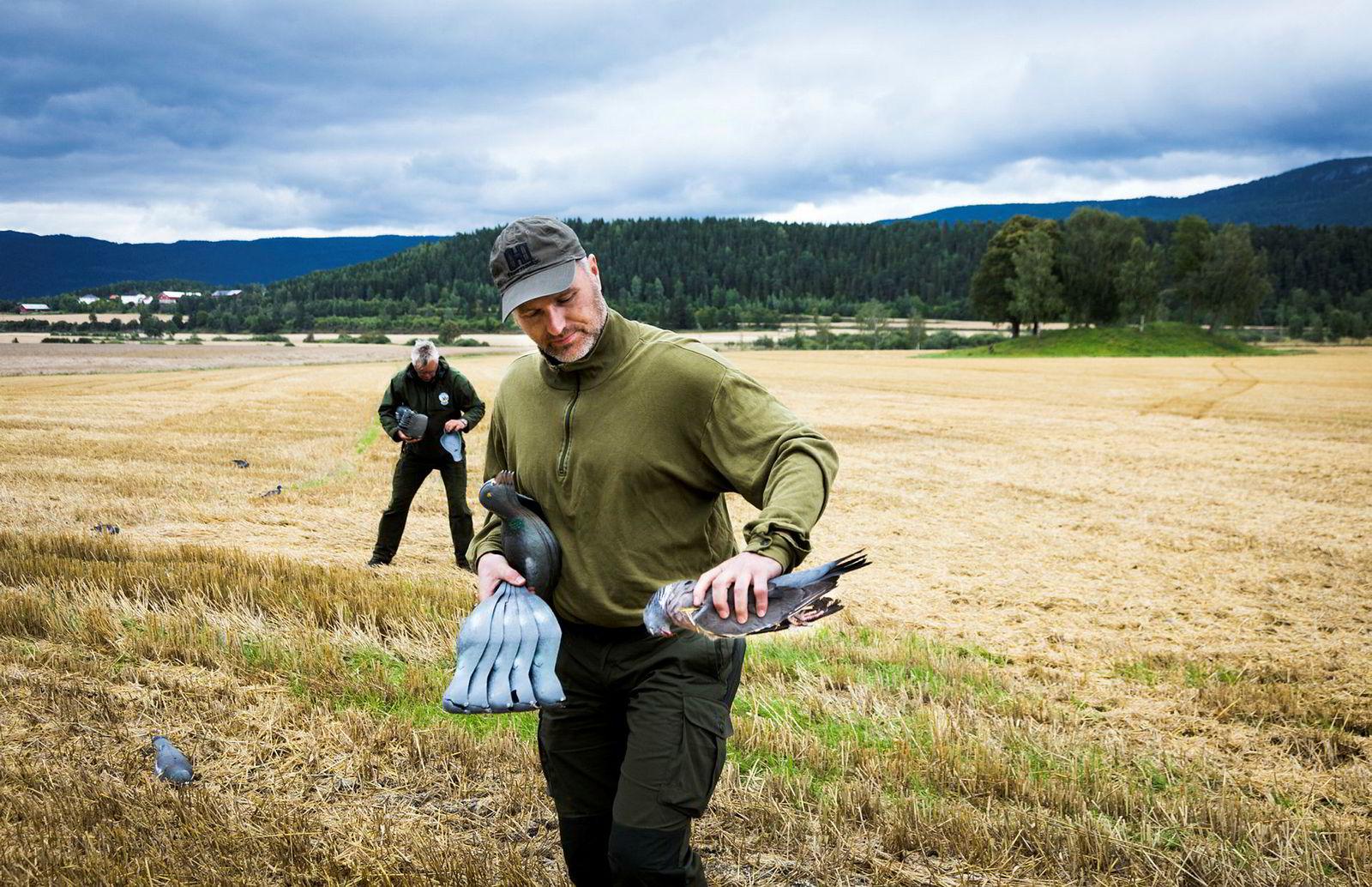 Elling Tryterud (foran) og Tor Thomassen plukker opp både lokkeduer og en felt due etter avsluttet jakt. I bakgrunnen gravhaugen der Halvdan Svarte skal være gravlagt for snart 1200 år siden.