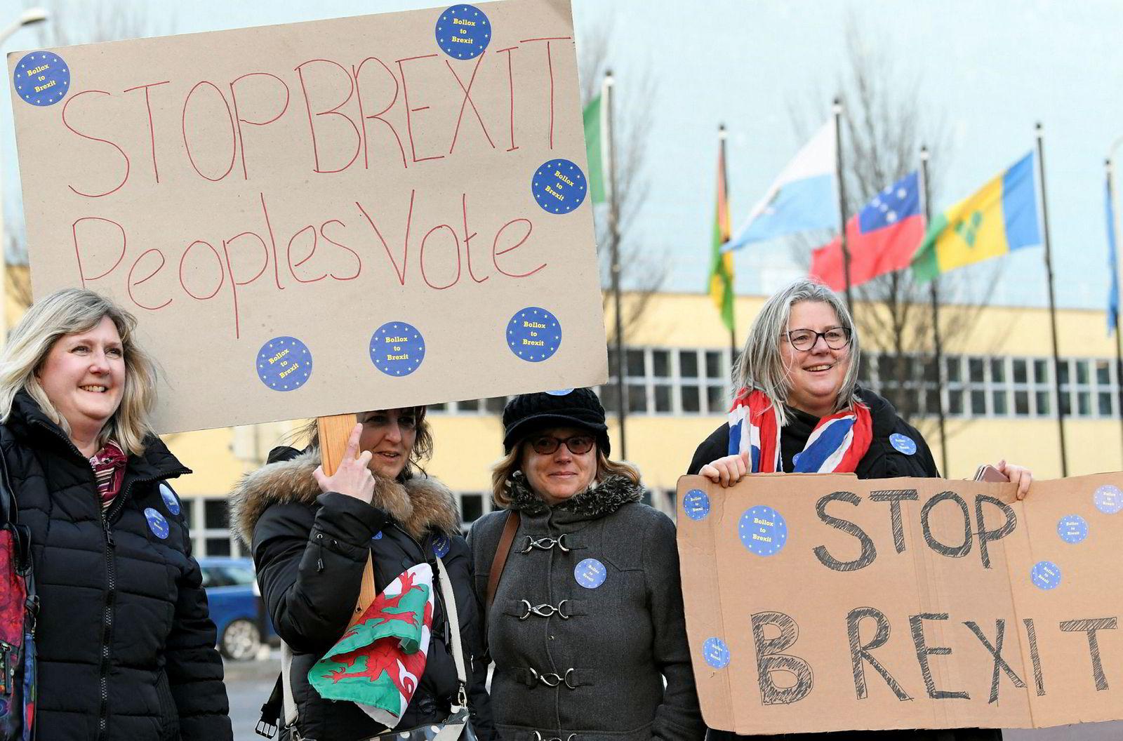 Demonstranter møtte opp i Haag tirsdag med krav om å stoppe brexit.