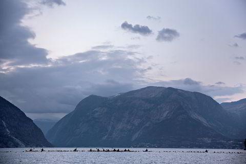 Nøyaktig 3,8 kilometer ute i Hardangerfjorden venter svømmerne på startskuddet klokken 0500.