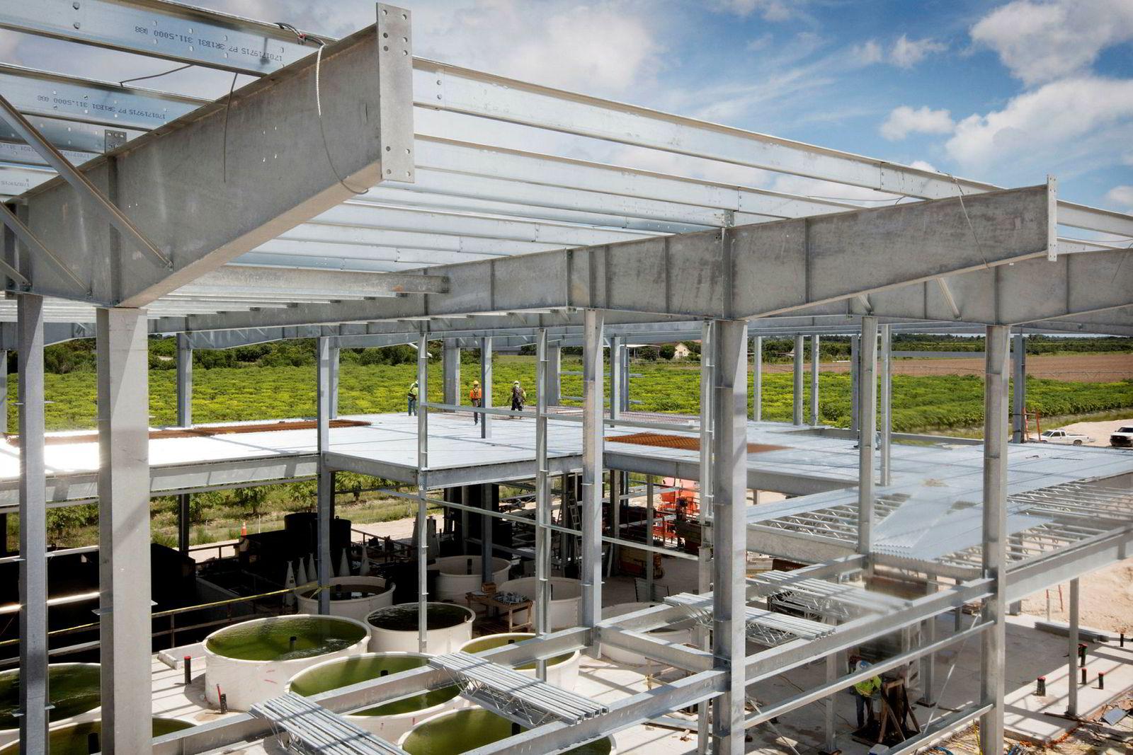 Atlantic Sapphire bygger verdens største landbaserte oppdrettsanlegg i Homestead i Florida med et mål om å produsere 90.000 tonn ferdigsløyd Florida-laks innen 2026 for 6,5 milliarder kroner.
