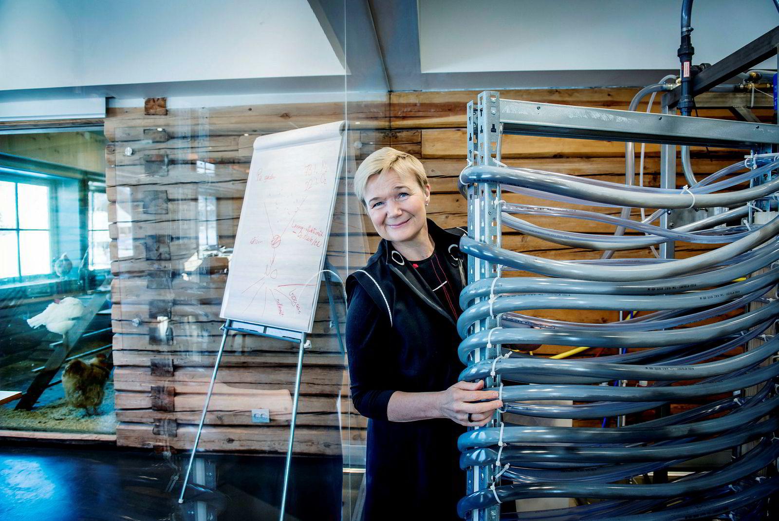 Grete Sønsteby har som mål å ta veksten på 1,5 prosent av gjødselmarkedet med teknologi som Norsk Hydro la på hyllen for snart 100 år siden.