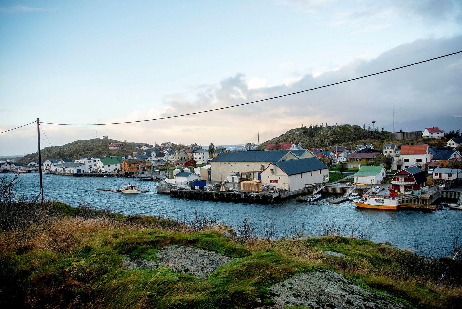 Lakseslakteriet til Ellingsen Seafood har gjort øya Skrova i Lofoten til et «laksevær».