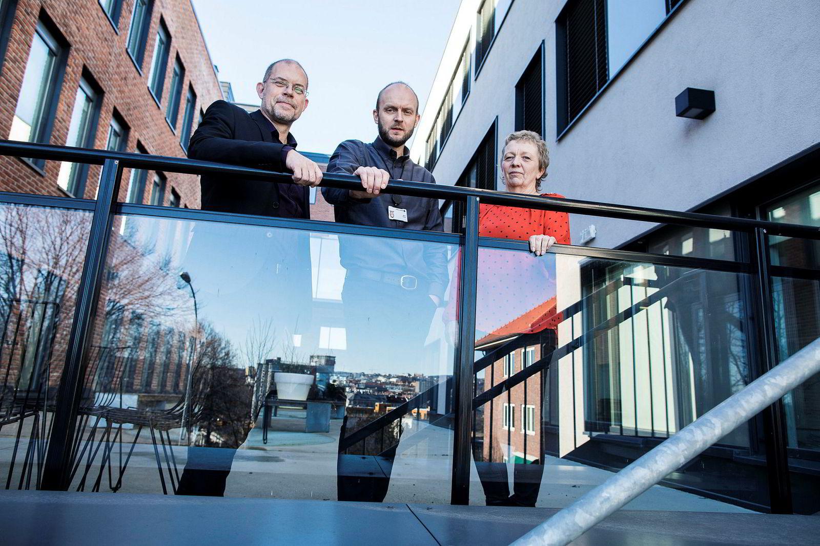 Seniorrådgiverne Håkon Grini (til venstre), Harald Lunde og Sigrun Kristoffersen i SSB har utarbeidet helt ny lønnsstatistikk basert på et langt større datagrunnlag enn tidligere.