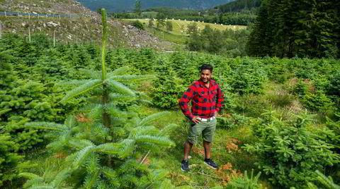 Anders Kristiansen er daglig leder i Trefadder – som planter klimaskog i Ryfylke – og snart i andre kystnære strøk. Folk og bedrifter kan kjøpe klimafangsten som trærne bedriver – for 299 kroner tonnet.