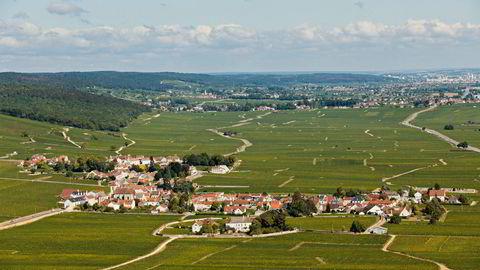 Landsbyen Morey-Saint-Denis nærmest bader i noen av verdens beste vinmarker.
