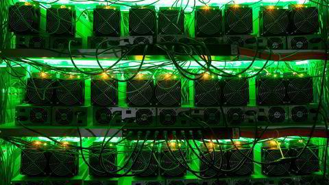 Bitcoin-koder under juletreet kan bli resultatet for flere når giganter som Visa og Paypal går inn i kryptovaluta.