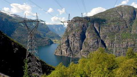 De årlige kostnadene forbundet med avbrudd i strømforsyningen (KILE) løper opp i flere hundre millioner kroner, og tilsvarende beløp går til forebyggende skogrydding i kraftgatene, skriver innleggsforfatterne.