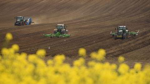Bønder sår raps i Pontefract, nord i England. Britisk landbruk er hardt rammet av brexit. En handelsavtale med Norge kan hjelpe.
