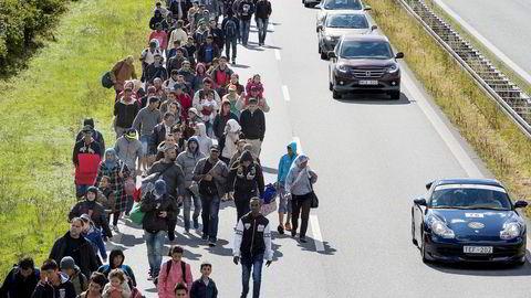 En stor gruppe syriske flyktninger til fots på landeveien gjennom Danmark i 2015. Målet var å søke asyl i Sverige.