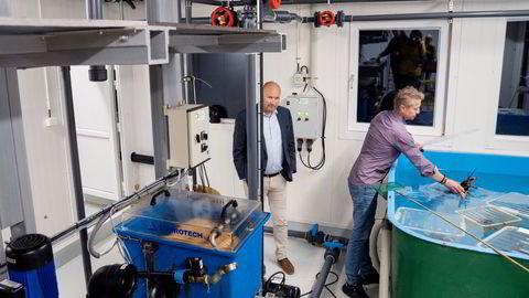 Hummeroppdretter Asbjørn Drengstig (til høyre) tror at 20 års sliit endelig skal kaste av seg. Nå skal overskuddsvann fra Tor Kristian Gylands datasentre gi lønnsom hummeroppdrett.