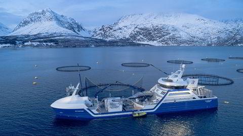 Sjømatselskapene investerer nå stort i teknologi som sikrer det grønne skifte.