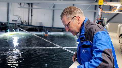 Andreas Kvame er konsernsjef i Grieg Seafood.