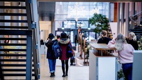 Når det gjelder høyere utdannelse, henger Norge etter. Akademia er god på teori, men har mindre erfaring med samarbeid med næringslivet i praksis.