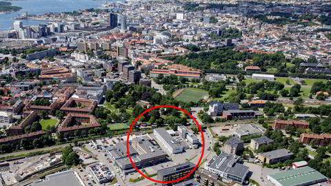 Flyfoto av Normannløkka på Ensjø, med Oslo sentrum i bakgrunnen, der det nye hovedkvarteret til NRK skal ligge. Planen er at det i forbindelse med det nye NRK-hovedkvarteret skal bygges en videregående skole.