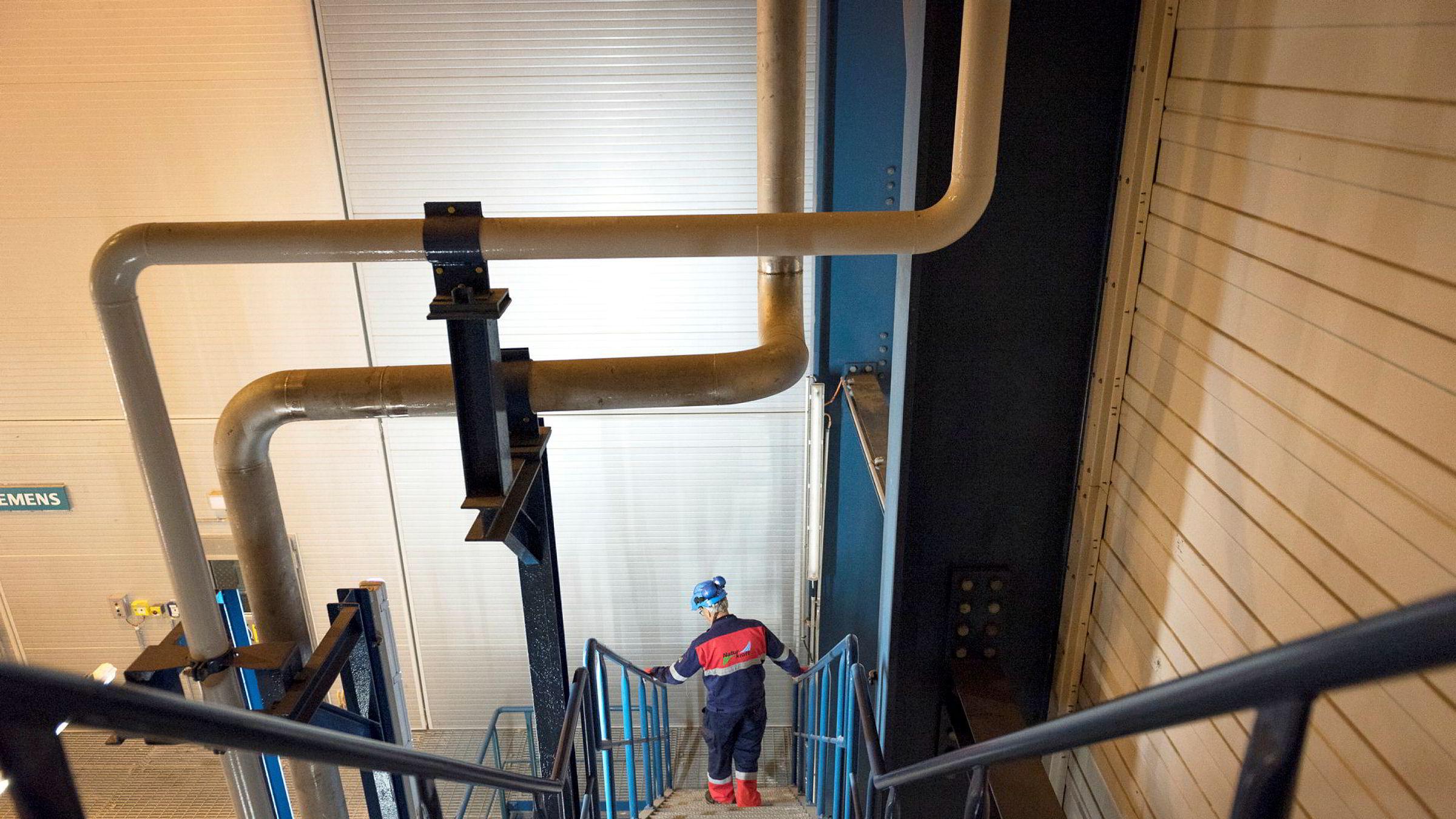 Private investorer kjøpte i 2010 og 2011 andeler i Gassled, et rørledningssystem som frakter og prosesserer gass fra feltene. Selgerne var og er brukere av ledningen, og kjøpesummen ble bestemt ut fra antagelser om fremtidig volum og pris (tariff) ved bruk av ledningen, skriver Gøril Bjerkan.
