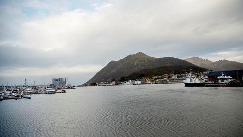 Myre Vesterålen båt havn