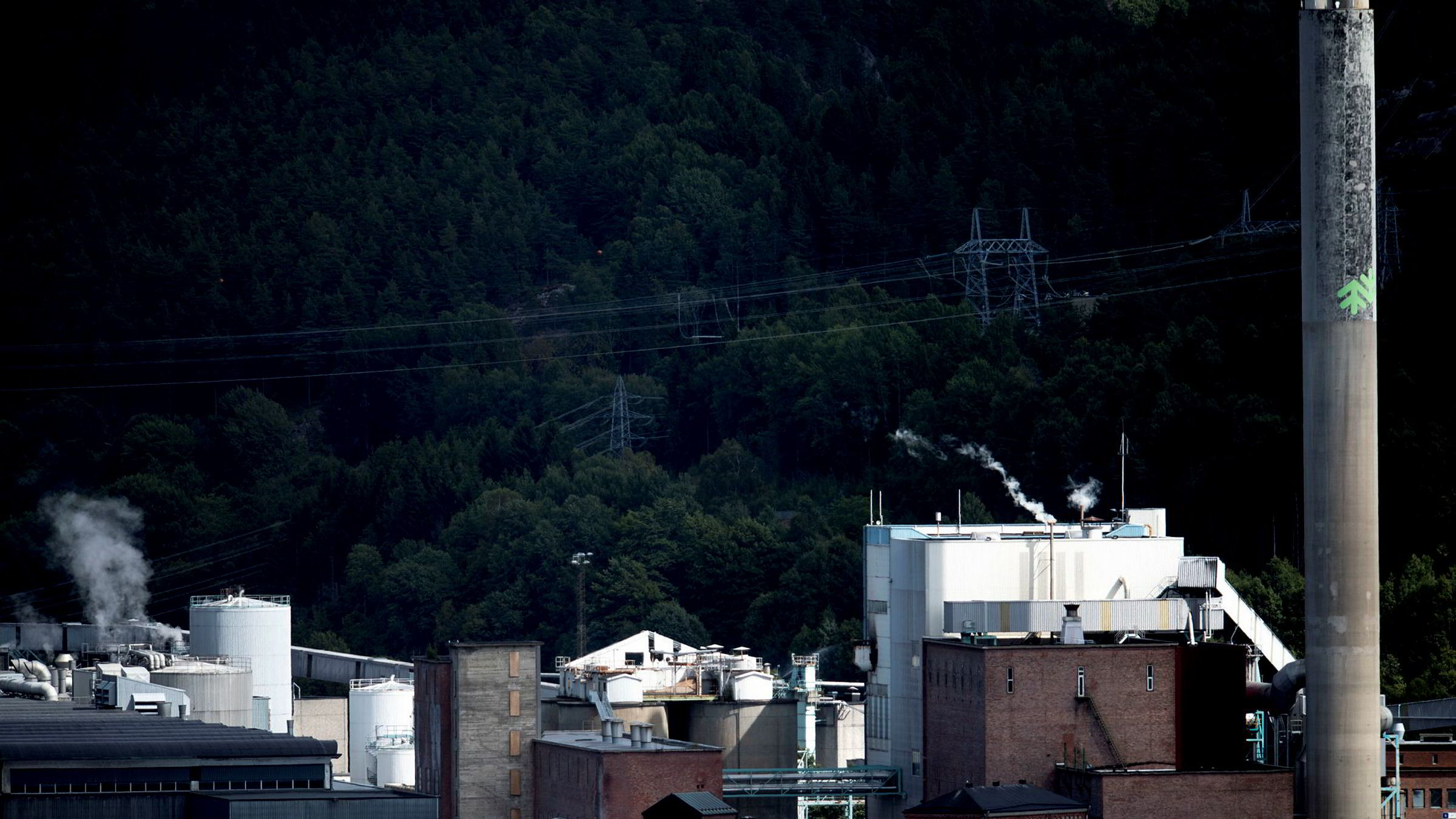 De to norske bedriftene, på Skogn og i Halden, hadde i fjor en samlet omsetning på over fire milliarder kroner og mer enn 400 millioner kroner i driftsresultat (før avskrivninger), skriver artikkelforfatteren. Her fra Norske Skog Saugbrugs i Halden.