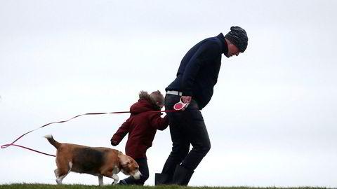 Søndagsturen ble ikke som vanlig for denne trioen i Harlingen i Nederland. Både hund, barn og far måtte stålsette seg mot de kraftige vindkastene.
