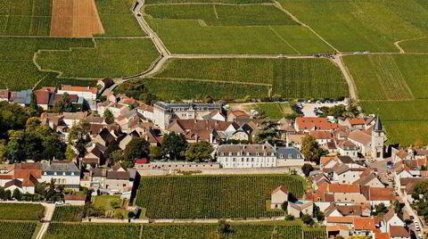 Burgund vin. Rundt landsbyen Vosne-Romanée i Burgund lages verdens dyreste viner basert på druen pinot noir.