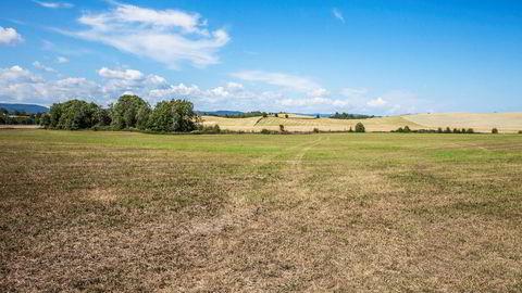 Mange bønder har slitt med tørke i hele sommer. Nå kan det koste staten flere hundre millioner kroner.