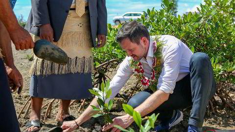 Utviklingsminister Dag-Inge Ulstein (KrF) planter et tre som skal hindre stigende havnivå å trenge inn i landsbyen 'Ahau på Tongatapu, en av øyene i øystaten Tonga i Stillehavet.