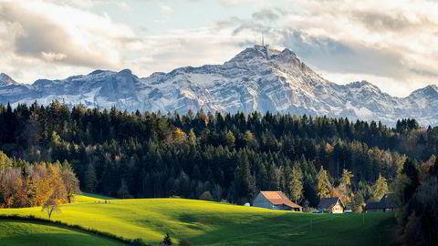 Sveits er det landet som er nest mest rammet i verden etter Spania, dels fordi det grenser til de hardest rammede regionene i Italia og dels fordi myndighetene var sent ute med effektive tiltak. Her utsikt fra universitetsbyen St Gallen ved Bodensjøen.
