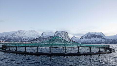 Norske verdier skapes utenfor sentrale strøk. Det krever en aktiv, men også prioritert distriktspolitikk. Oppdrettsanlegg på Flakstadvåg, Senja