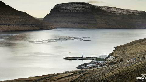 Her er ett av Bakkafrosts oppdrettsanlegg på Færøyene. DN er ikke kjent med om dette anlegget var blant de to som ble skadet i den kraftige stormen.
