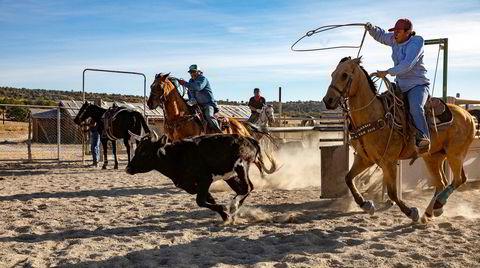 På en slette utenfor Steamboat Rock trener Tommy Jackson Sr (til venstre) og datteren Christina Luna «roping» – å fange en løpende kalv med lasso fra hesteryggen. For de beste ligger det store penger i sporten.