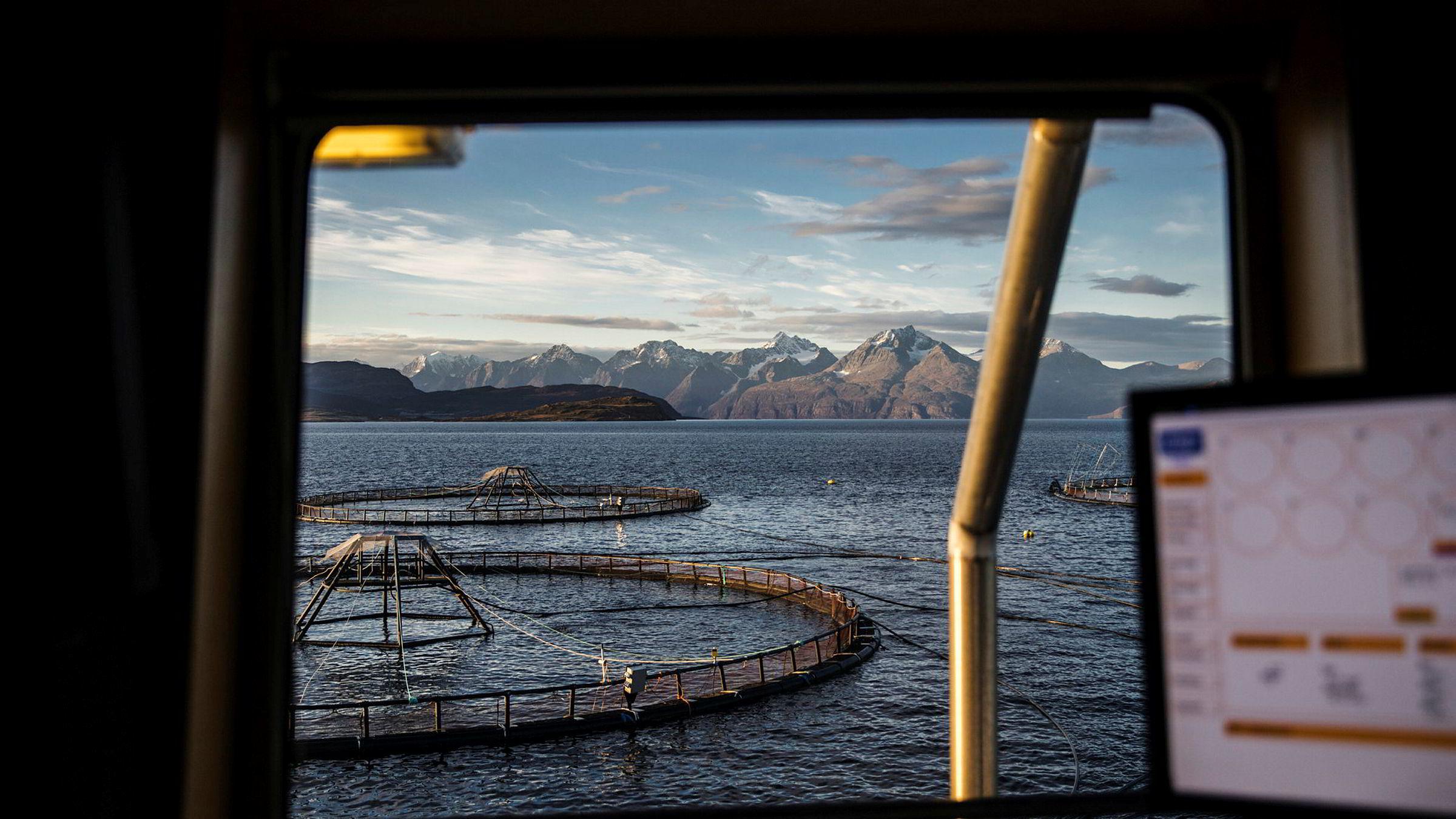 En ekstra lakseeskattskatt vil eiernes mulighet til å bygge opp buffer i gode tider svekkes, og kan gjøre dem enda mer sårbare for utenlandsk oppkjøp i dårlige tider. Her fra et av Lerøy Auroras anlegg ved Skjervøy i Nord-Troms.