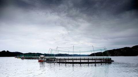 Et solid flertall av regjerings- og opposisjonspartier sier blankt nei til å innføre grunnrenteskatt på fiskeoppdrett.